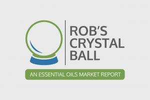 Summer 2019 Market Report